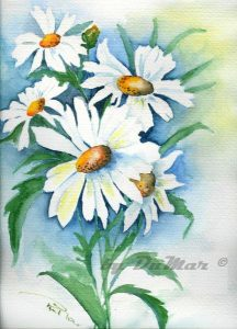 Margueriten