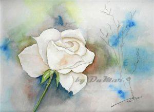 Weisse Rosen 1