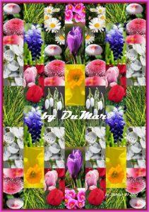Gartenfrühling